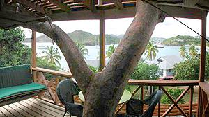 Antigua rentals: Twinkle Cottage.